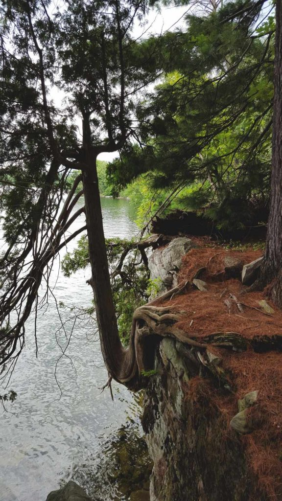 IITD 2015 - Charleston Lake